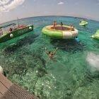 O paraíso dos mergulhadores – Cozumel
