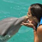 Nado com golfinhos em Isla Mujeres