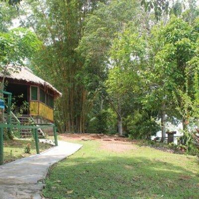Hotel de Selva na Amazônia – Dolphin Lodge