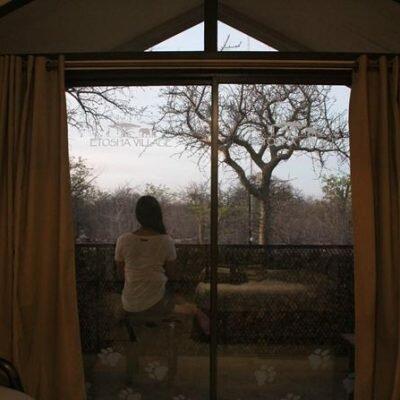 Onde se hospedar em Etosha – Etosha Village