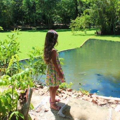 Bosque da Ciência – Manaus