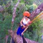 Dicas de Manaus: Escalada em árvore na Amazônia