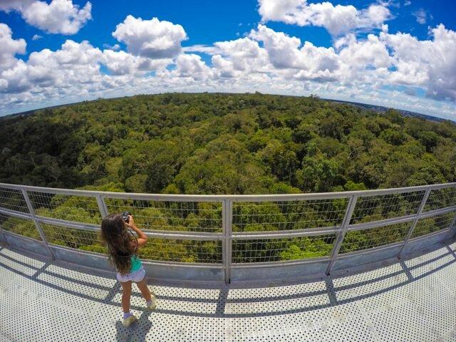museu-da-amazônia