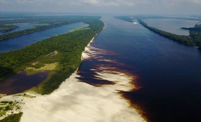 Praia do Camaleão - Anavilhanas