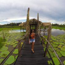 O que fazer em Manaus - Dicas para você aproveitar ao máximo